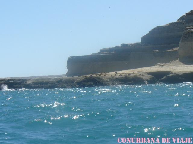 Navegando por el Golfo Nuevo
