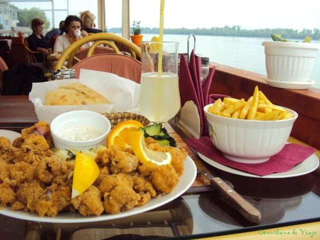 Almuerzo a orillas del Danubio en Zemun